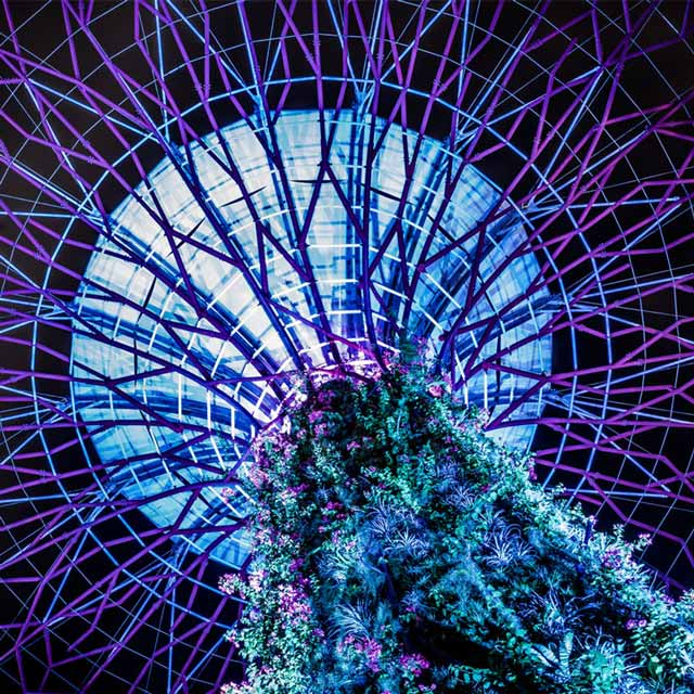 Singapore, City, Guide, Supertree